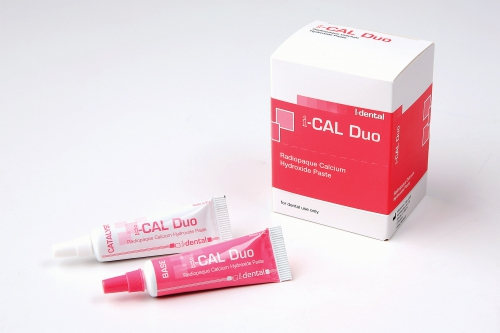 i-CAL Duo base and catalyst paste
